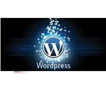 Vuoi ottimizzare il tuo WordPress ?